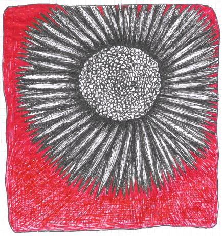 Doodling asunflower