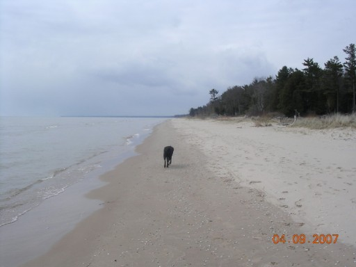 Lake Michigan shoreline with Pericles, April 9th, 2007, photo submitted by author