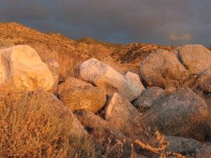 Golden nuggets. As I linger in the fading light, the rocks around me turn to gold. December 2007 © photo 2007-2009 by Lesley Goddin. All rights reserved.