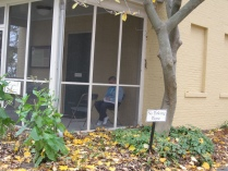 IMG_0651 porch