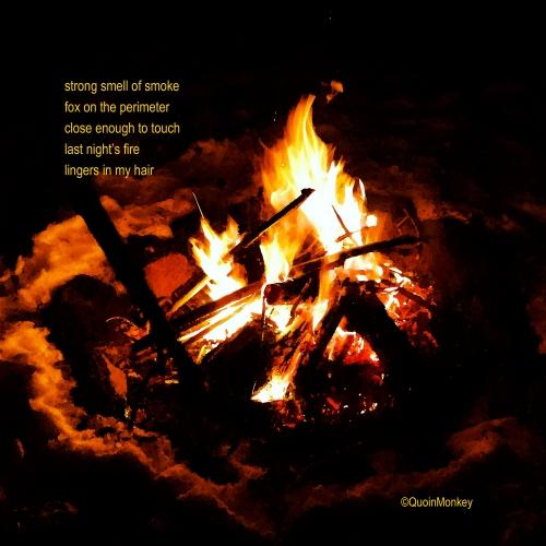 Fire 3 - IMG_20150308_131427 copy5